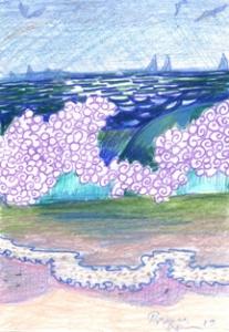 seashore72