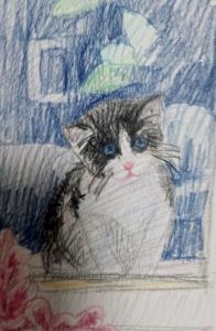 kittensketch